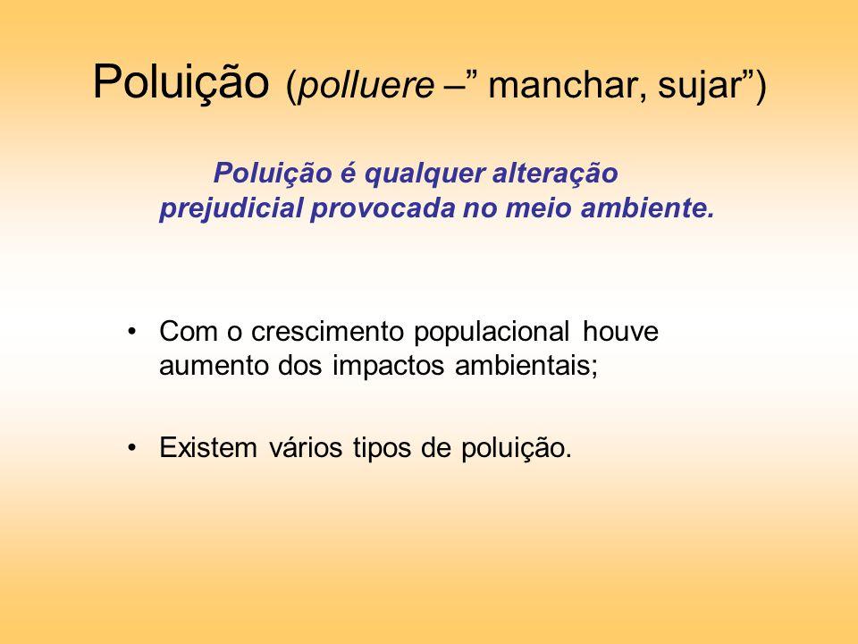 Poluição (polluere – manchar, sujar )