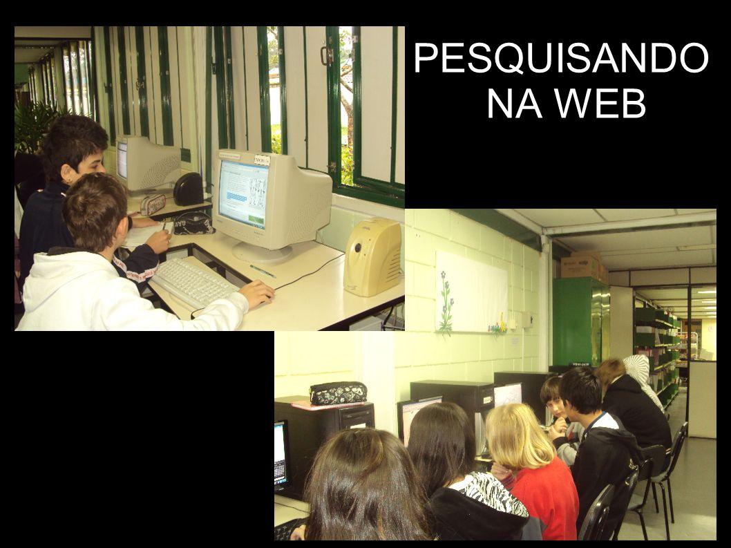 PESQUISANDO NA WEB