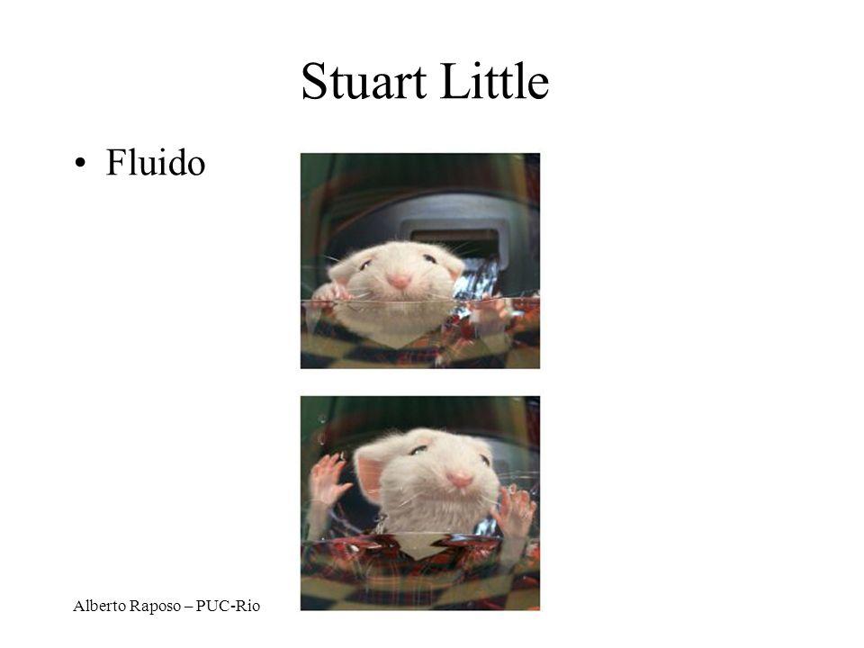 Stuart Little Fluido Alberto Raposo – PUC-Rio