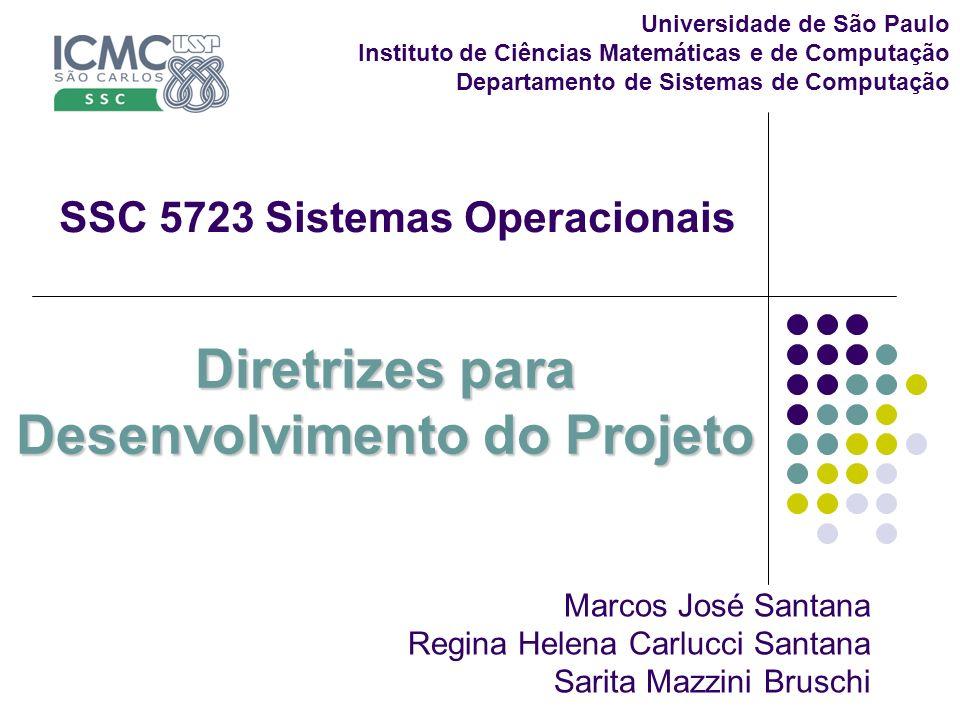 Diretrizes para Desenvolvimento do Projeto