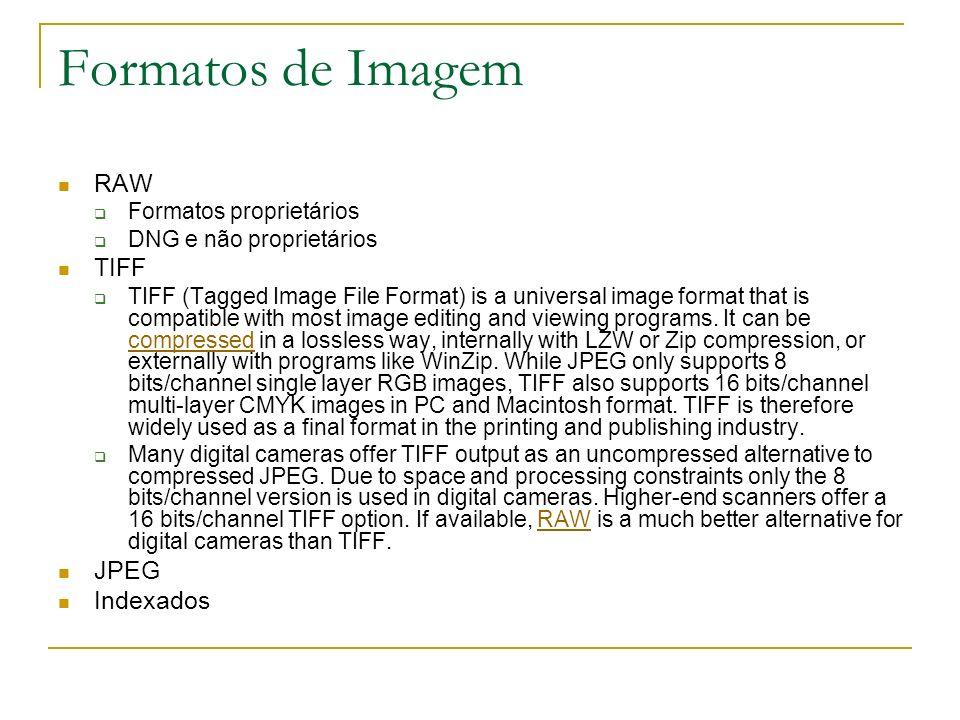 Formatos de Imagem RAW TIFF JPEG Indexados Formatos proprietários
