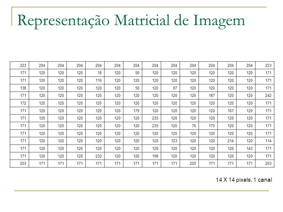 Representação Matricial de Imagem