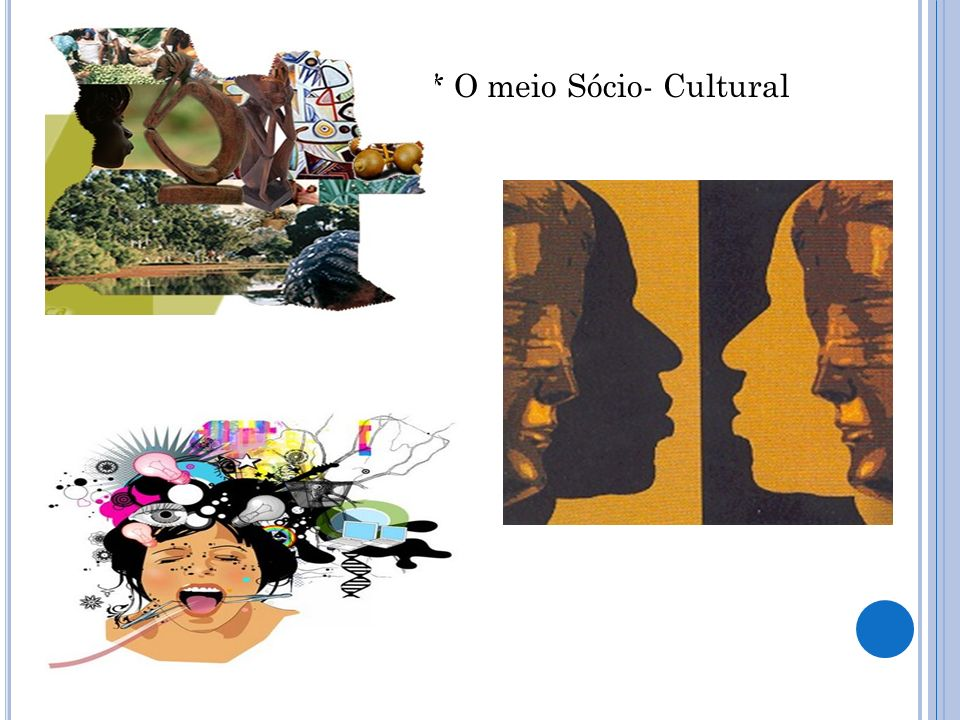 * O meio Sócio- Cultural