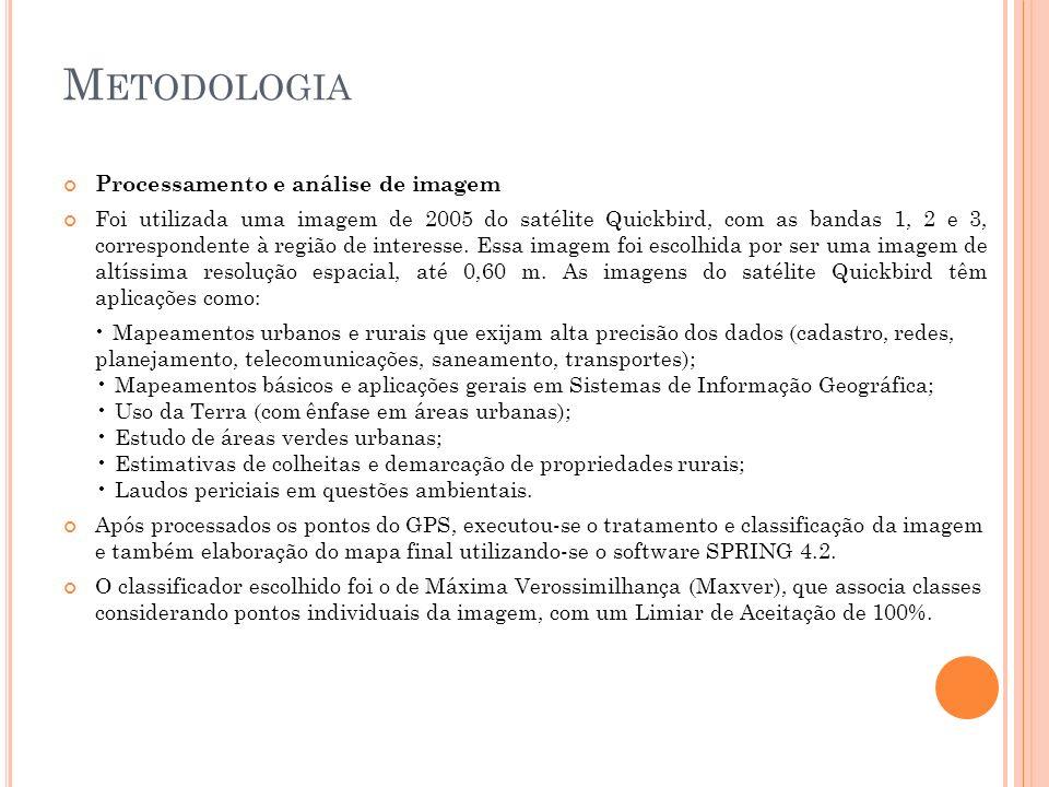 Metodologia Processamento e análise de imagem