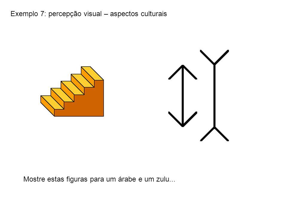 Exemplo 7: percepção visual – aspectos culturais