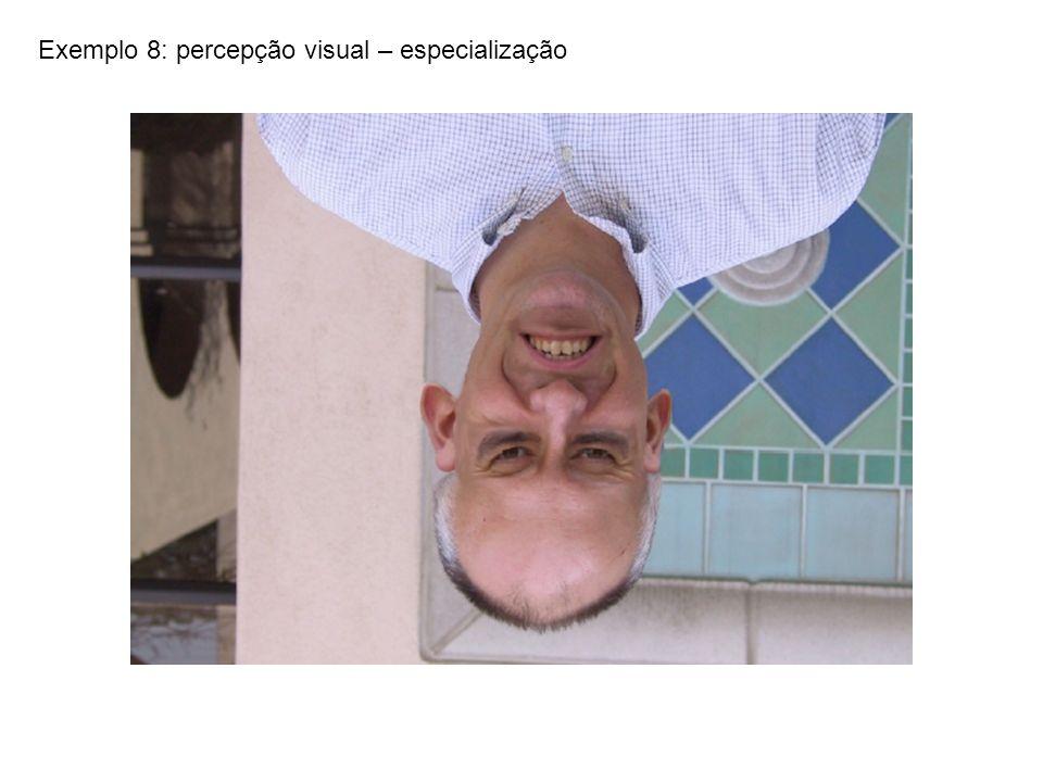 Exemplo 8: percepção visual – especialização