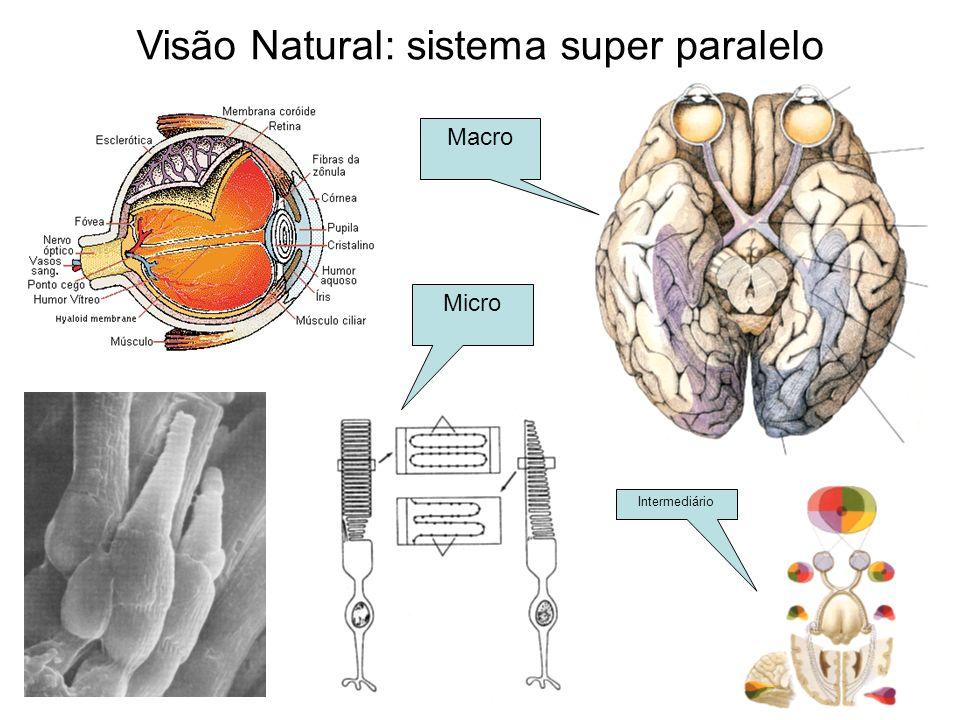 Visão Natural: sistema super paralelo