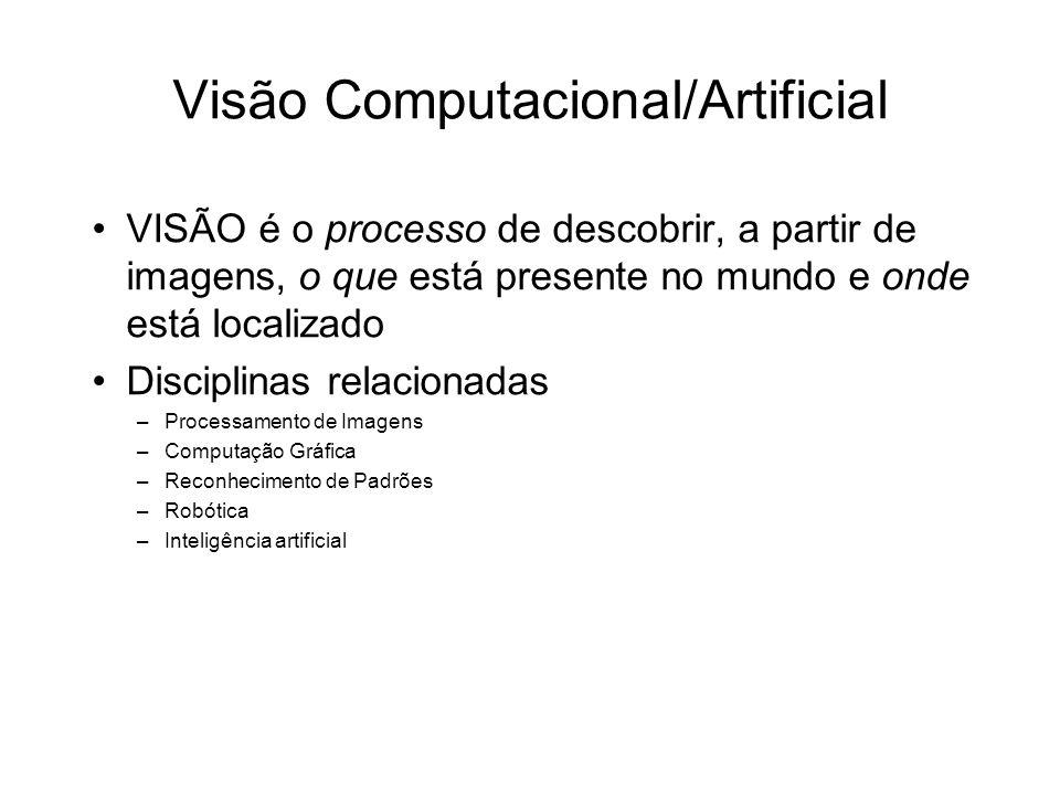 Visão Computacional/Artificial