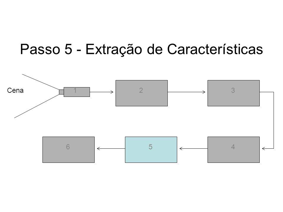 Passo 5 - Extração de Características