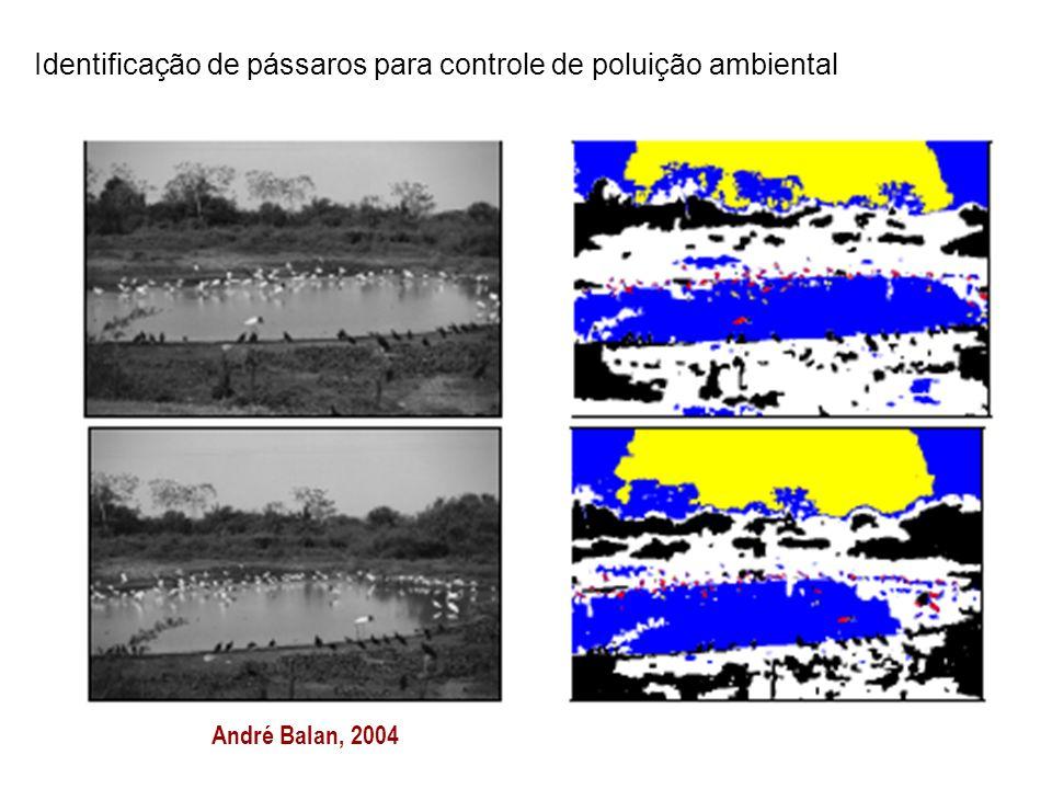 Identificação de pássaros para controle de poluição ambiental
