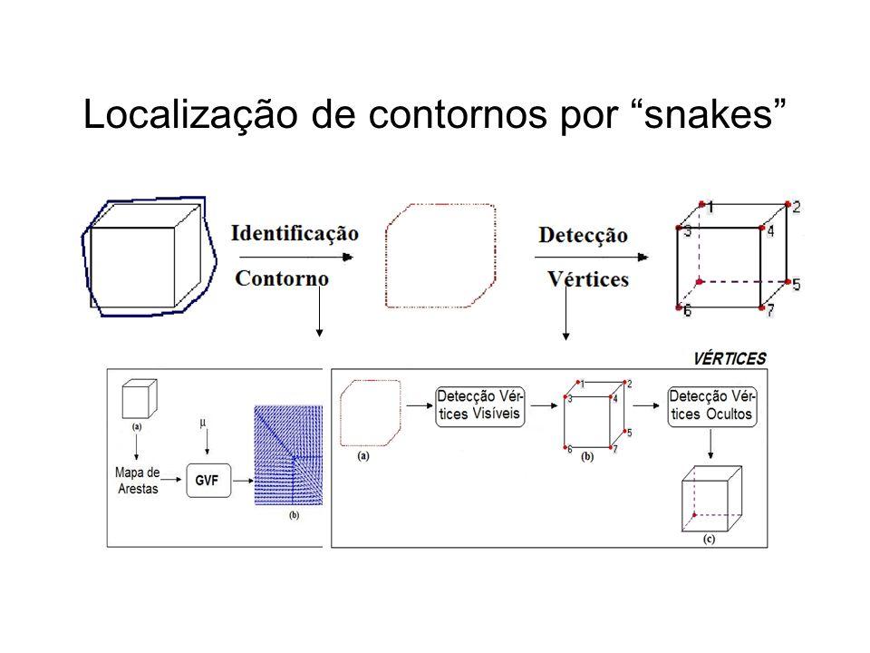 Localização de contornos por snakes