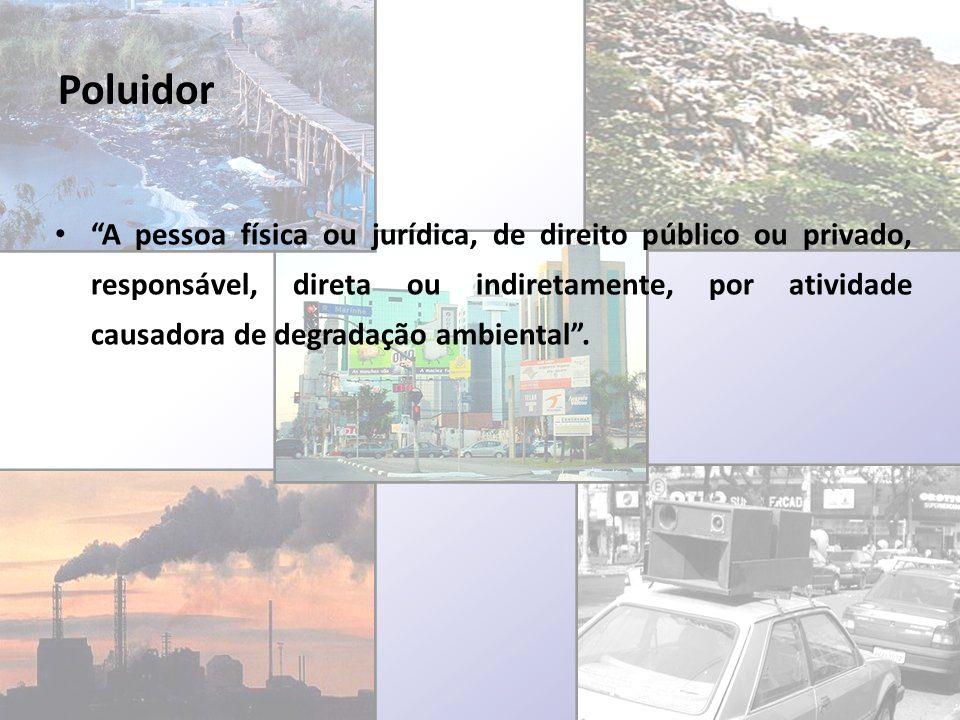 Poluidor