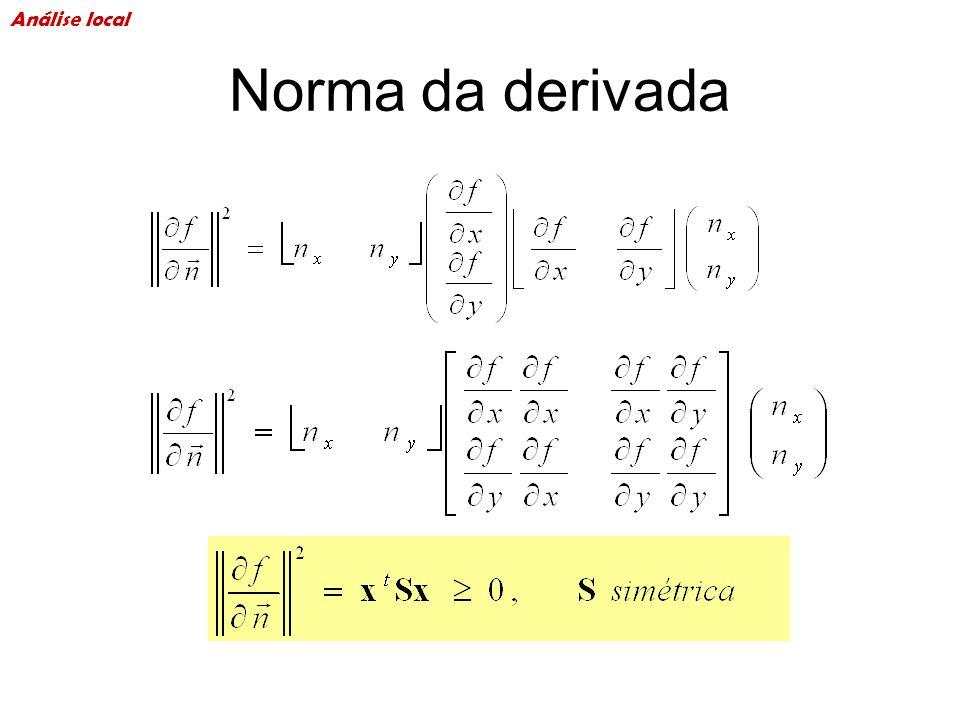 Análise local Norma da derivada