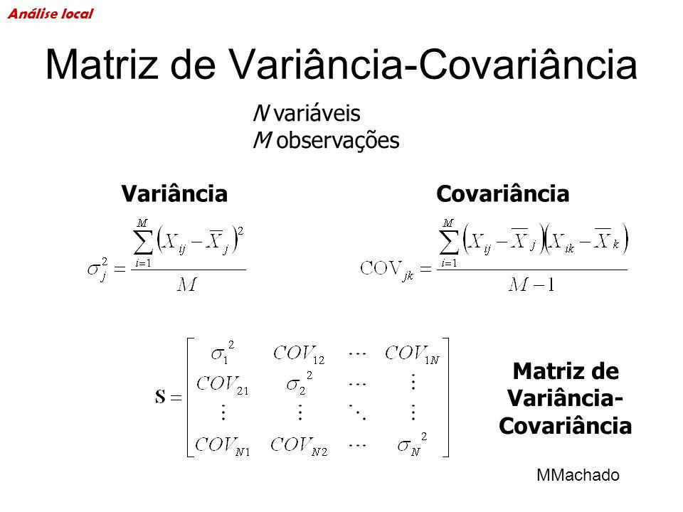 Matriz de Variância-Covariância