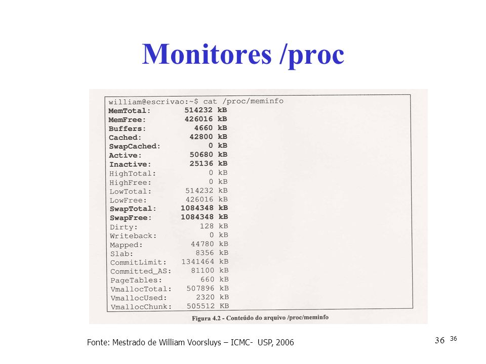 Monitores /proc Fonte: Mestrado de William Voorsluys – ICMC- USP, 2006