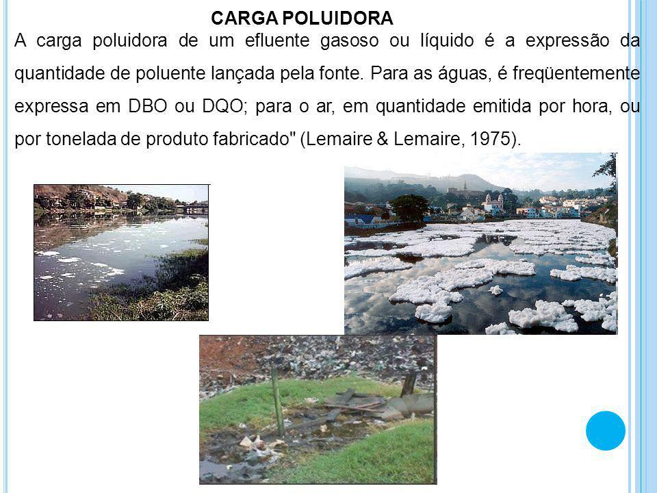 CARGA POLUIDORA