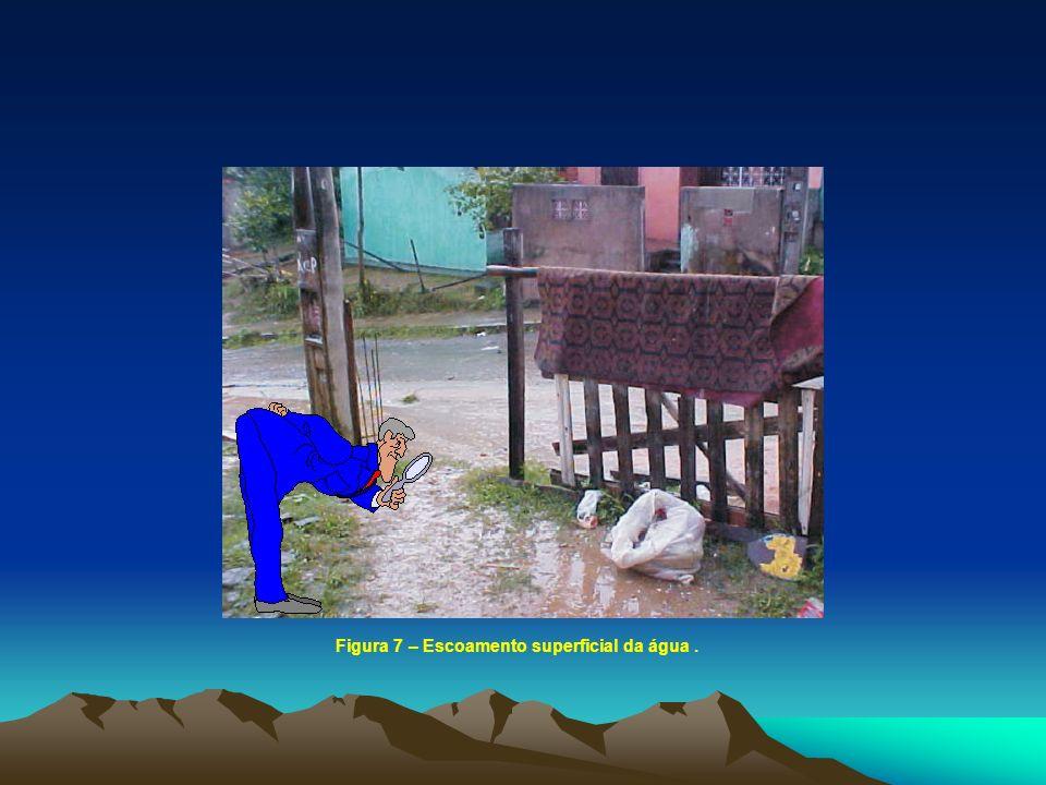 Figura 7 – Escoamento superficial da água .