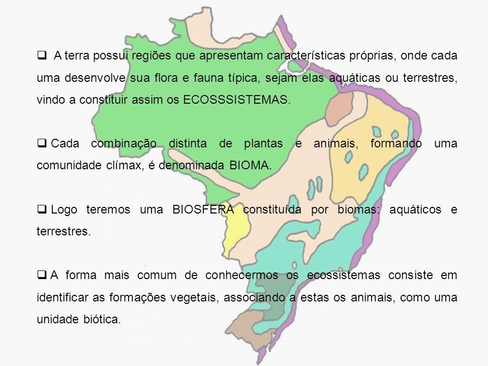 A terra possui regiões que apresentam características próprias, onde cada uma desenvolve sua flora e fauna típica, sejam elas aquáticas ou terrestres, vindo a constituir assim os ECOSSSISTEMAS.