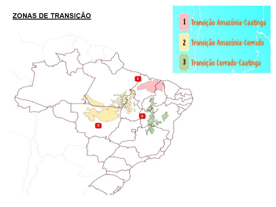 ZONAS DE TRANSIÇÃO