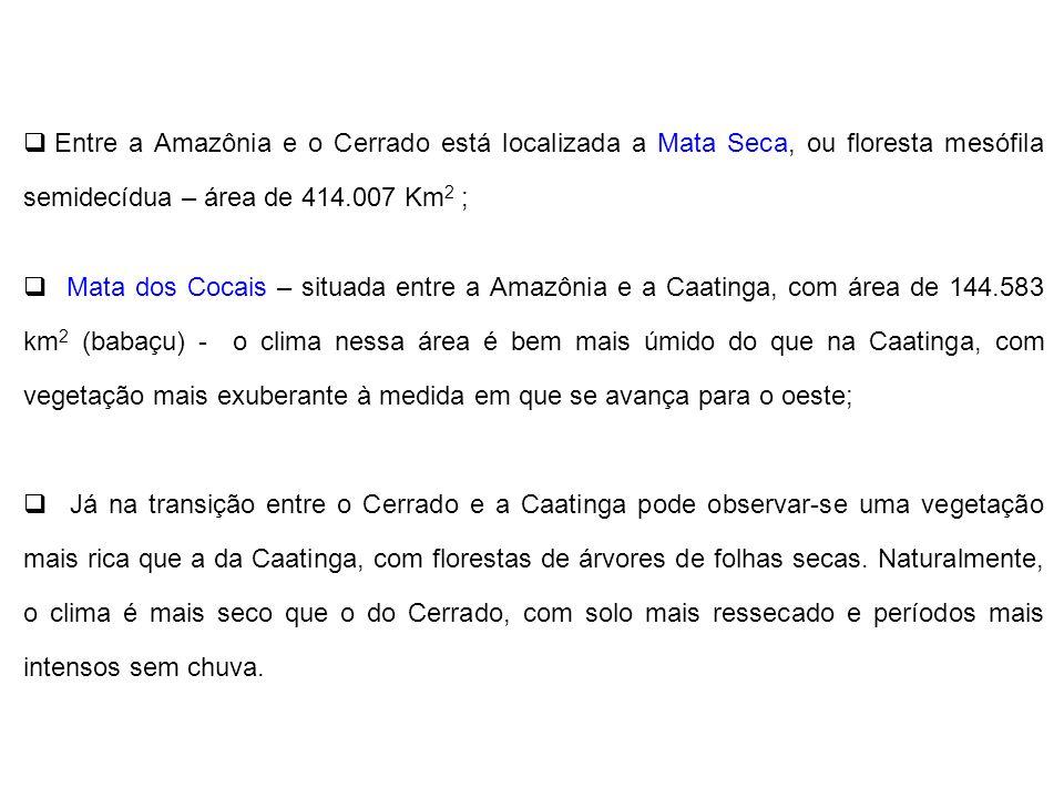 Entre a Amazônia e o Cerrado está localizada a Mata Seca, ou floresta mesófila semidecídua – área de 414.007 Km2 ;