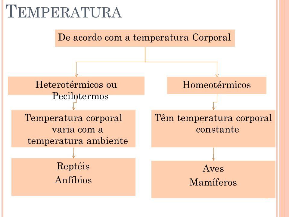 Temperatura De acordo com a temperatura Corporal