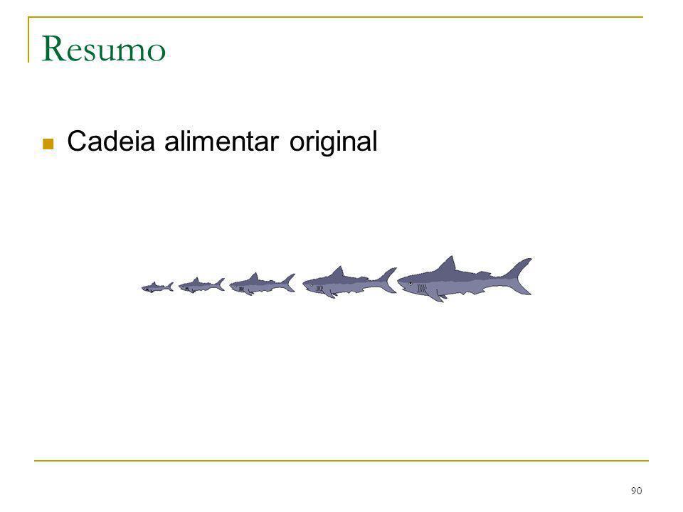 Resumo Cadeia alimentar original