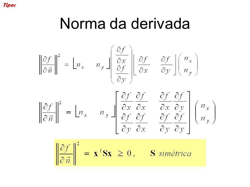 Tipos Norma da derivada