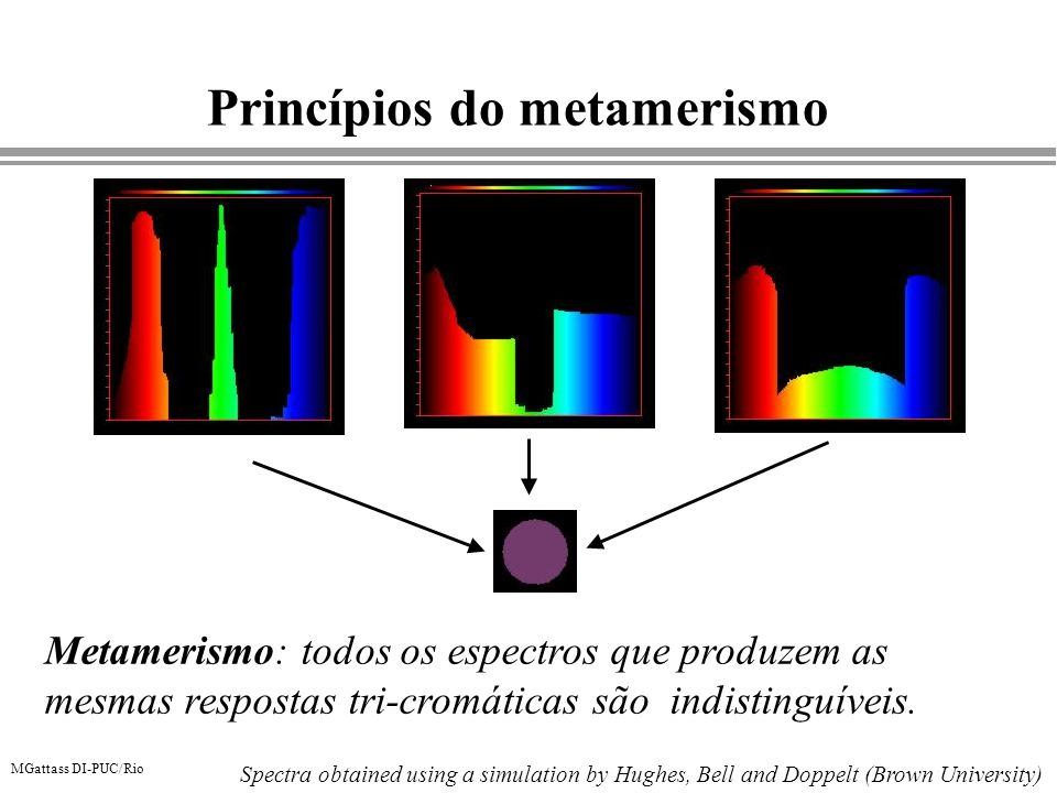 Princípios do metamerismo