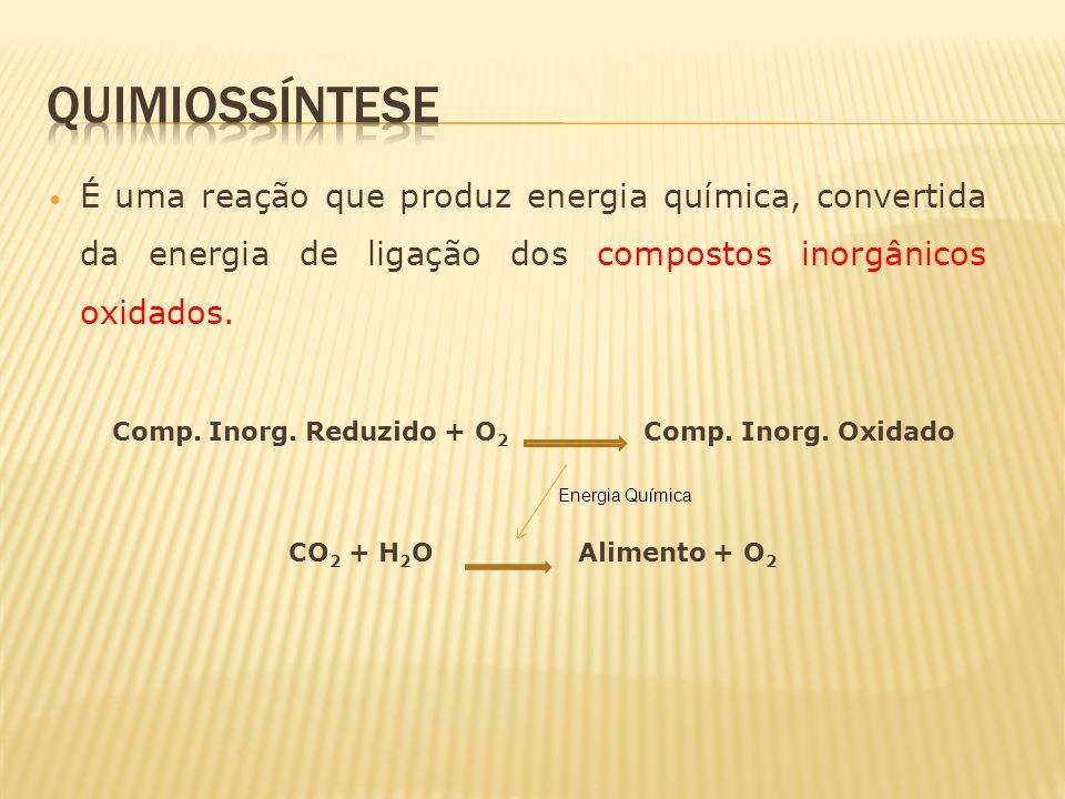 Comp. Inorg. Reduzido + O2 Comp. Inorg. Oxidado
