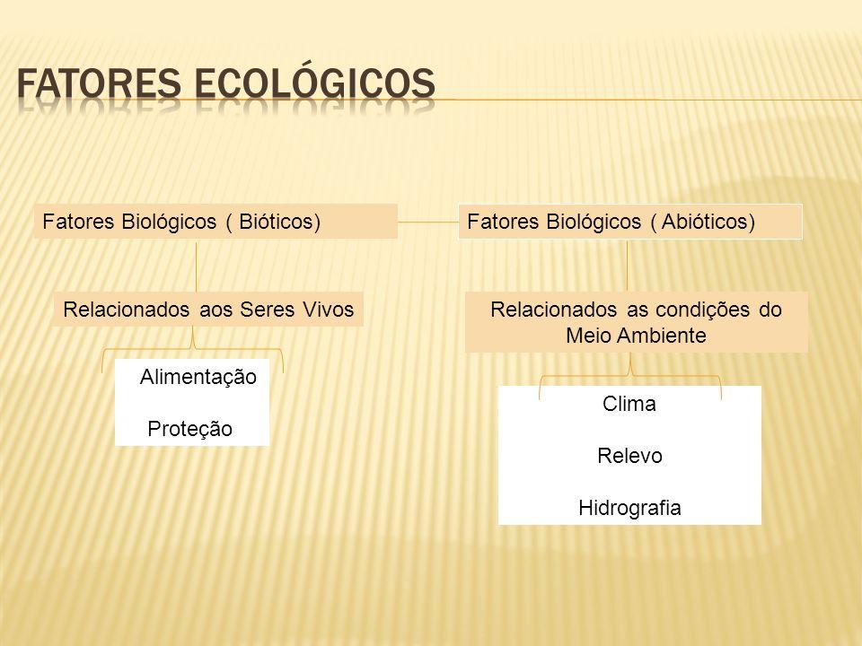 Relacionados as condições do Meio Ambiente