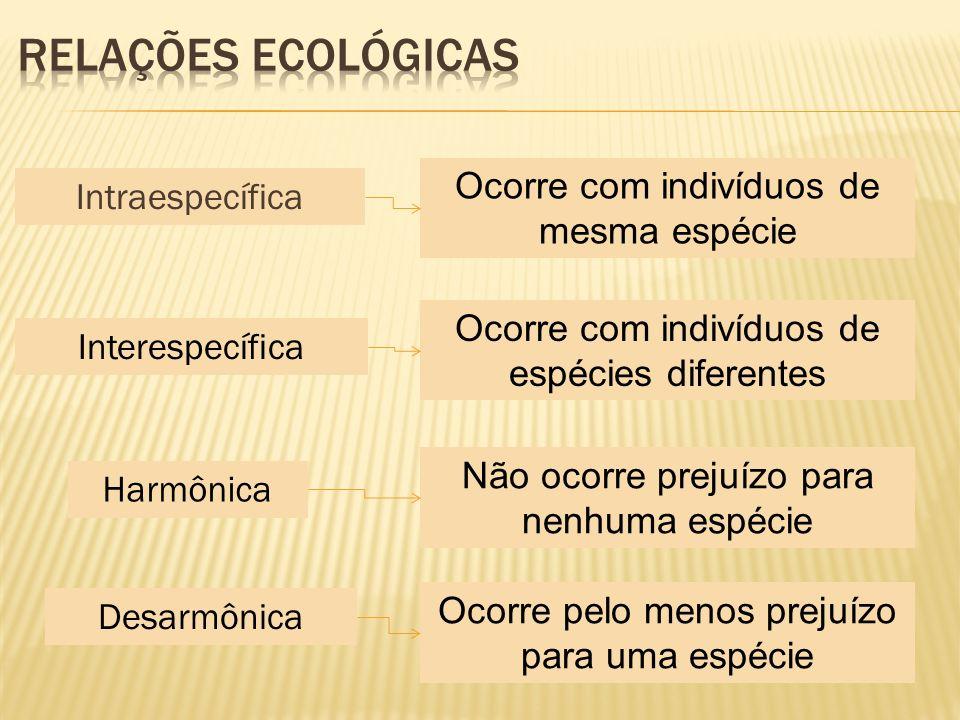 Relações Ecológicas Ocorre com indivíduos de mesma espécie