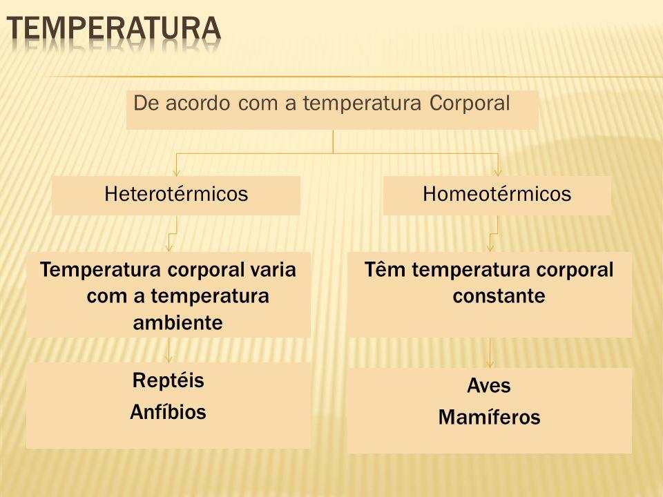 Temperatura De acordo com a temperatura Corporal Heterotérmicos