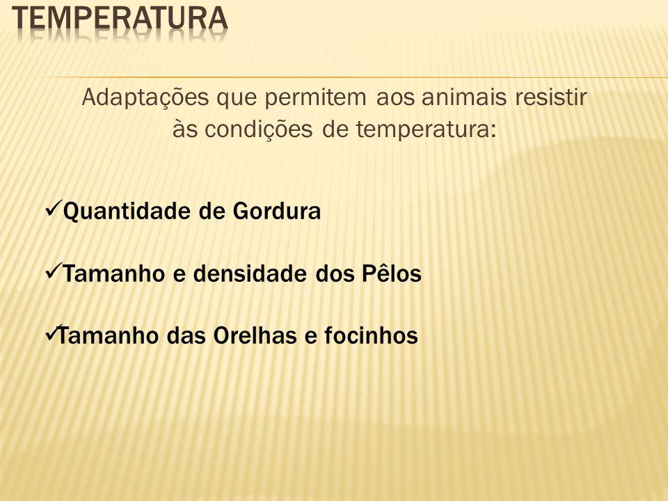 Temperatura Adaptações que permitem aos animais resistir às condições de temperatura: Quantidade de Gordura.
