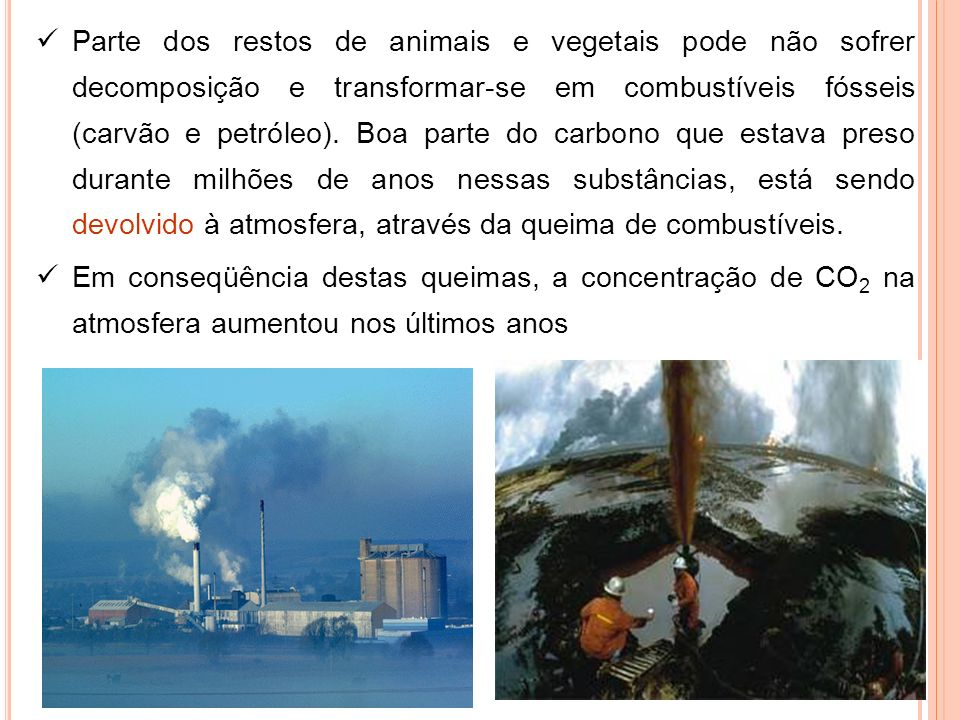Parte dos restos de animais e vegetais pode não sofrer decomposição e transformar-se em combustíveis fósseis (carvão e petróleo). Boa parte do carbono que estava preso durante milhões de anos nessas substâncias, está sendo devolvido à atmosfera, através da queima de combustíveis.