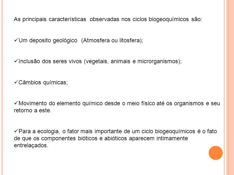 As principais características observadas nos ciclos biogeoquímicos são: