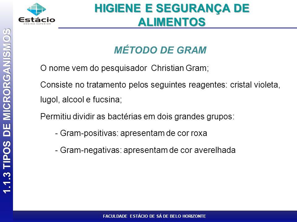 1.1.3 TIPOS DE MICRORGANISMOS HIGIENE E SEGURANÇA DE ALIMENTOS