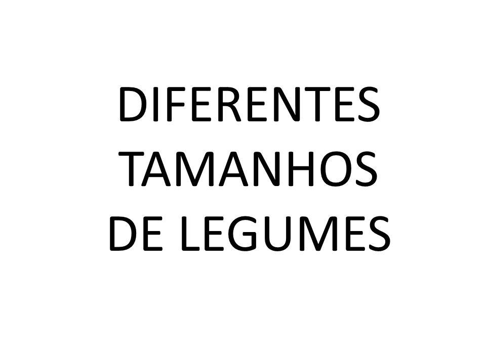 DIFERENTES TAMANHOS DE LEGUMES