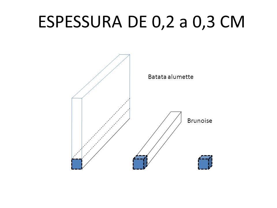 ESPESSURA DE 0,2 a 0,3 CM Batata alumette Brunoise