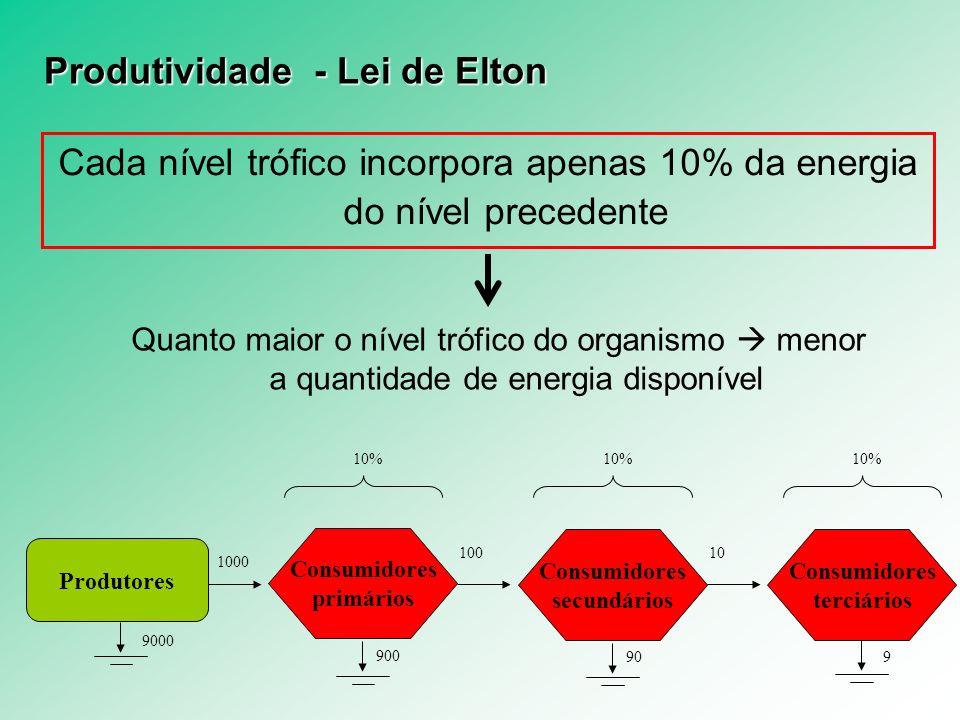 Produtividade - Lei de Elton