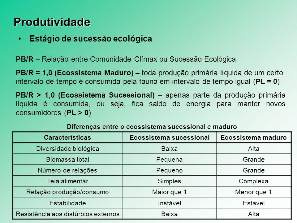 Produtividade Estágio de sucessão ecológica