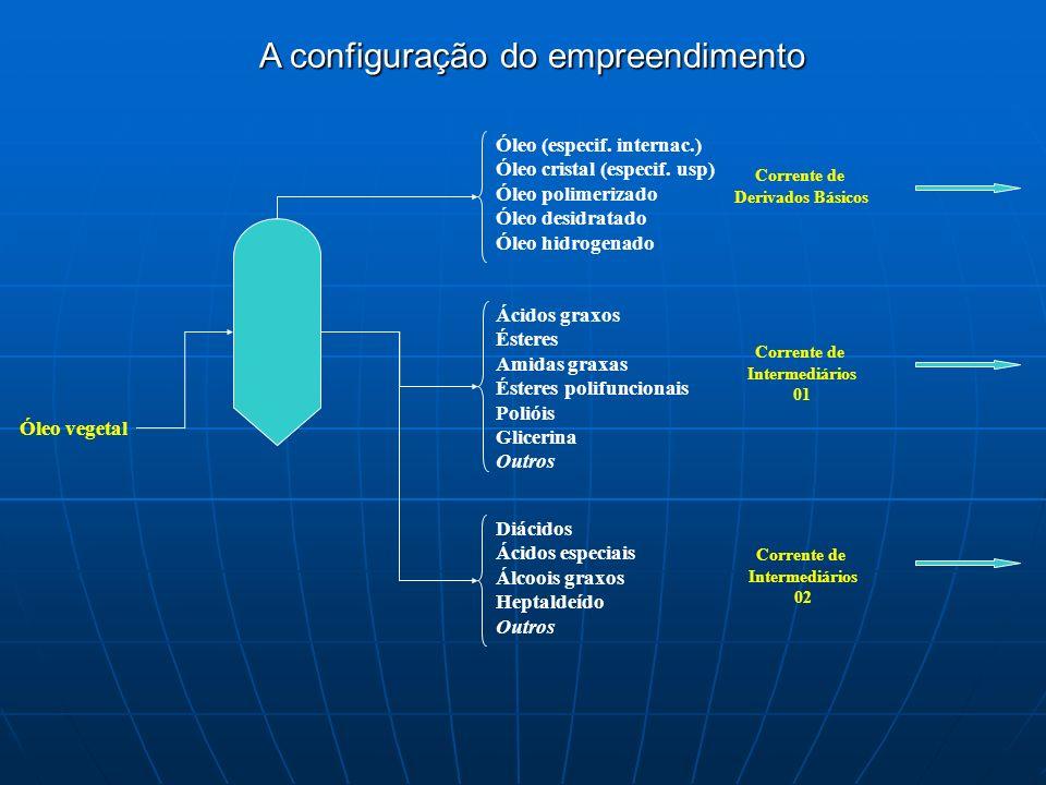 A configuração do empreendimento