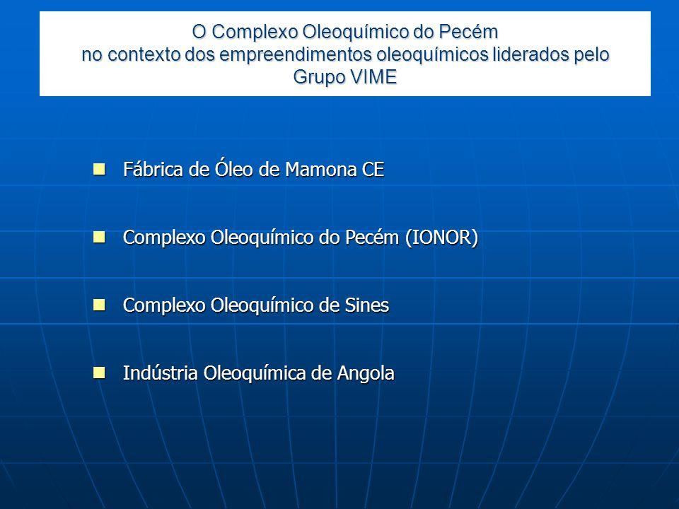 O Complexo Oleoquímico do Pecém no contexto dos empreendimentos oleoquímicos liderados pelo Grupo VIME