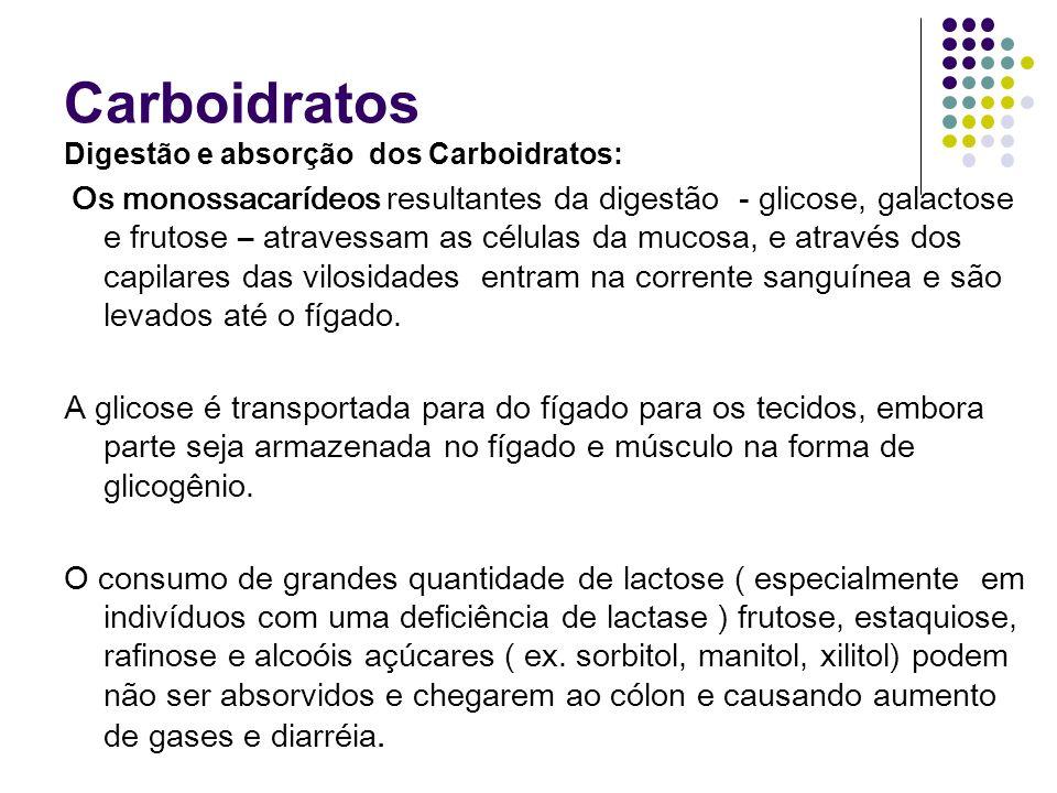 Carboidratos Digestão e absorção dos Carboidratos: