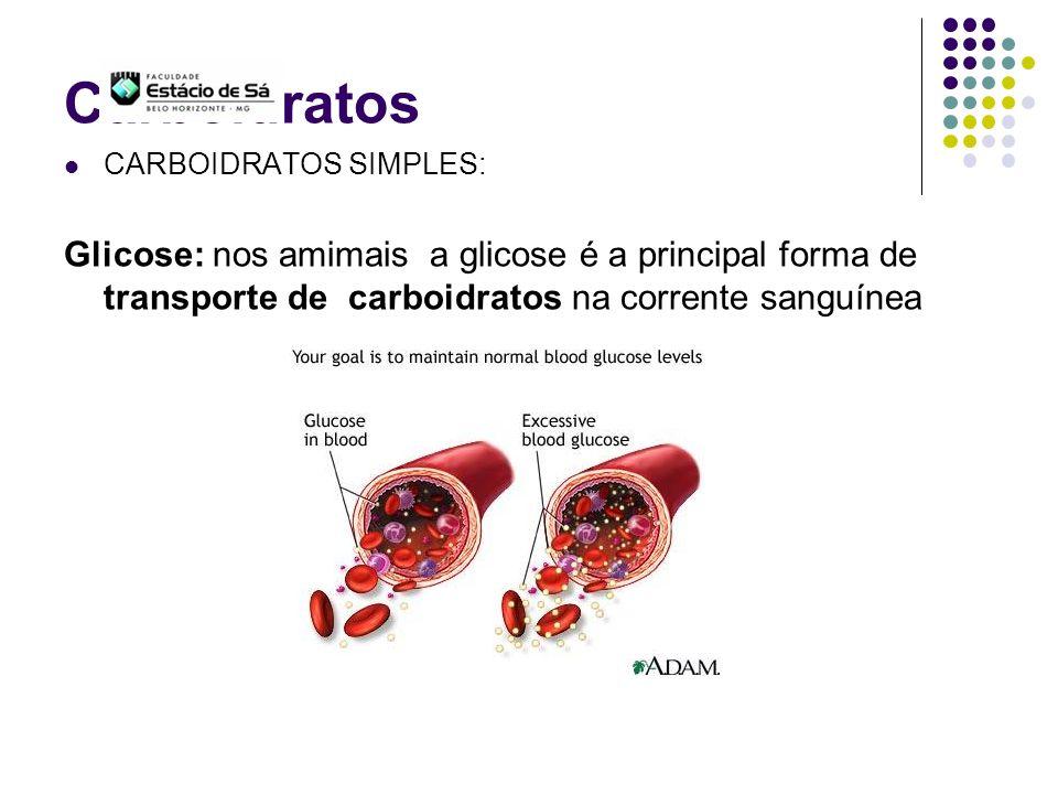 Carboidratos CARBOIDRATOS SIMPLES: Glicose: nos amimais a glicose é a principal forma de transporte de carboidratos na corrente sanguínea.