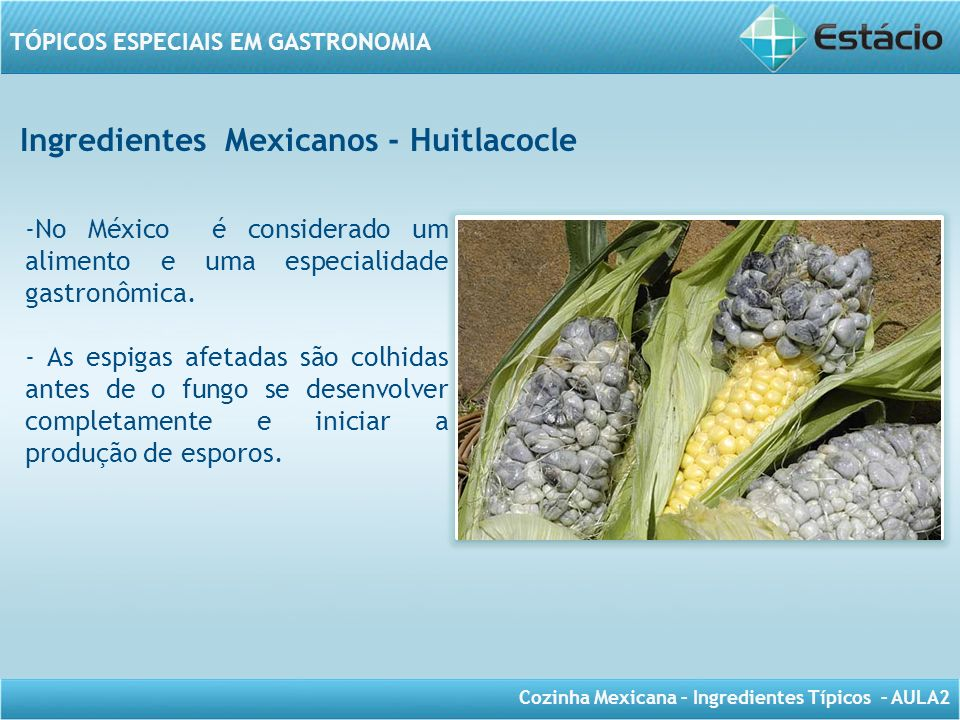 Ingredientes Mexicanos - Huitlacocle