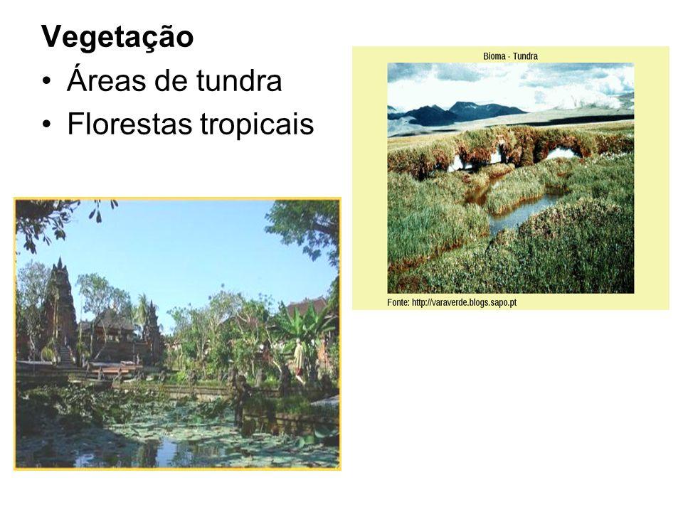Vegetação Áreas de tundra Florestas tropicais