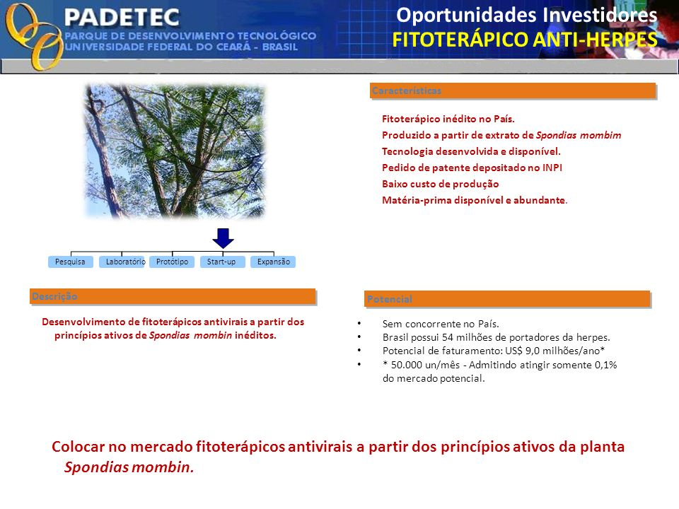 Oportunidades Investidores FITOTERÁPICO ANTI-HERPES