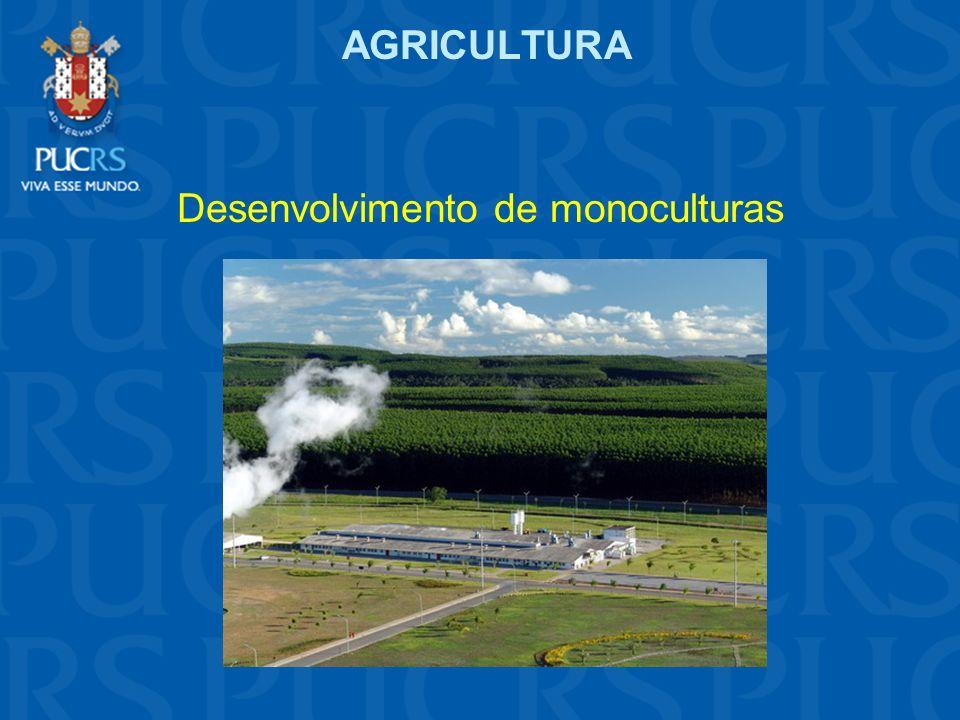 AGRICULTURA Desenvolvimento de monoculturas