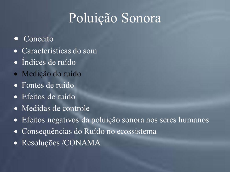 Poluição Sonora Conceito Características do som Índices de ruído