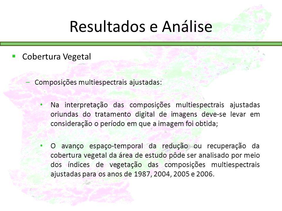 Resultados e Análise Cobertura Vegetal
